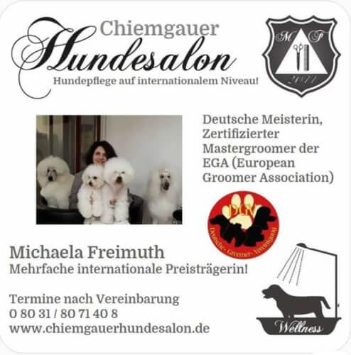DGV - Deutsche Groomer Vereinigung